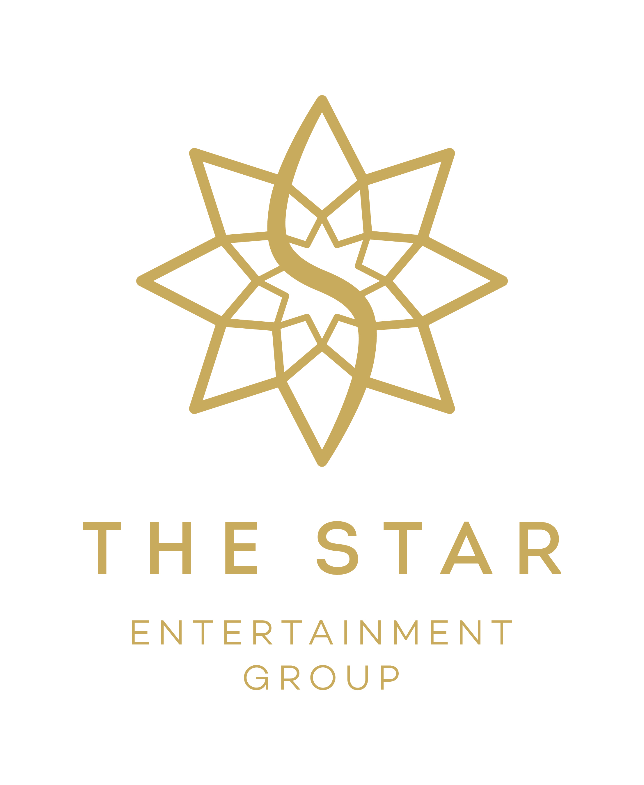 The Star Entertainment Logo